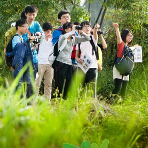 生態導賞團 Ecotour